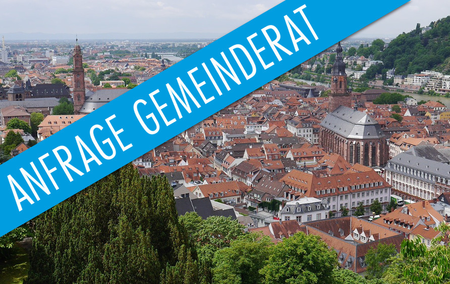 Anfrage der AfD im Gemeinderat Heidelberg