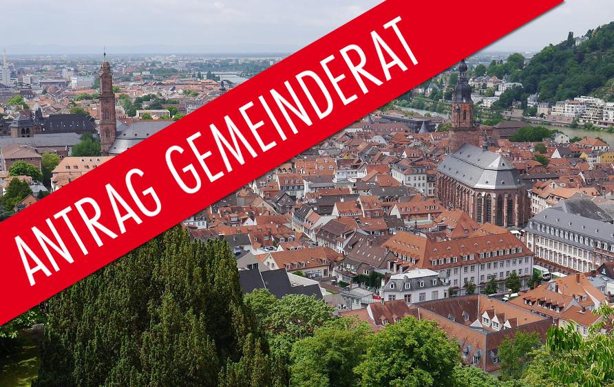 Antrag der AfD im Gemeinderat Heidelberg