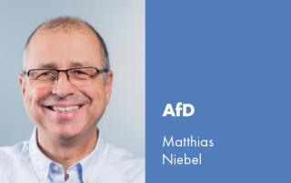 Gemeinderat Niebel AfD Stadtblatt Artikel