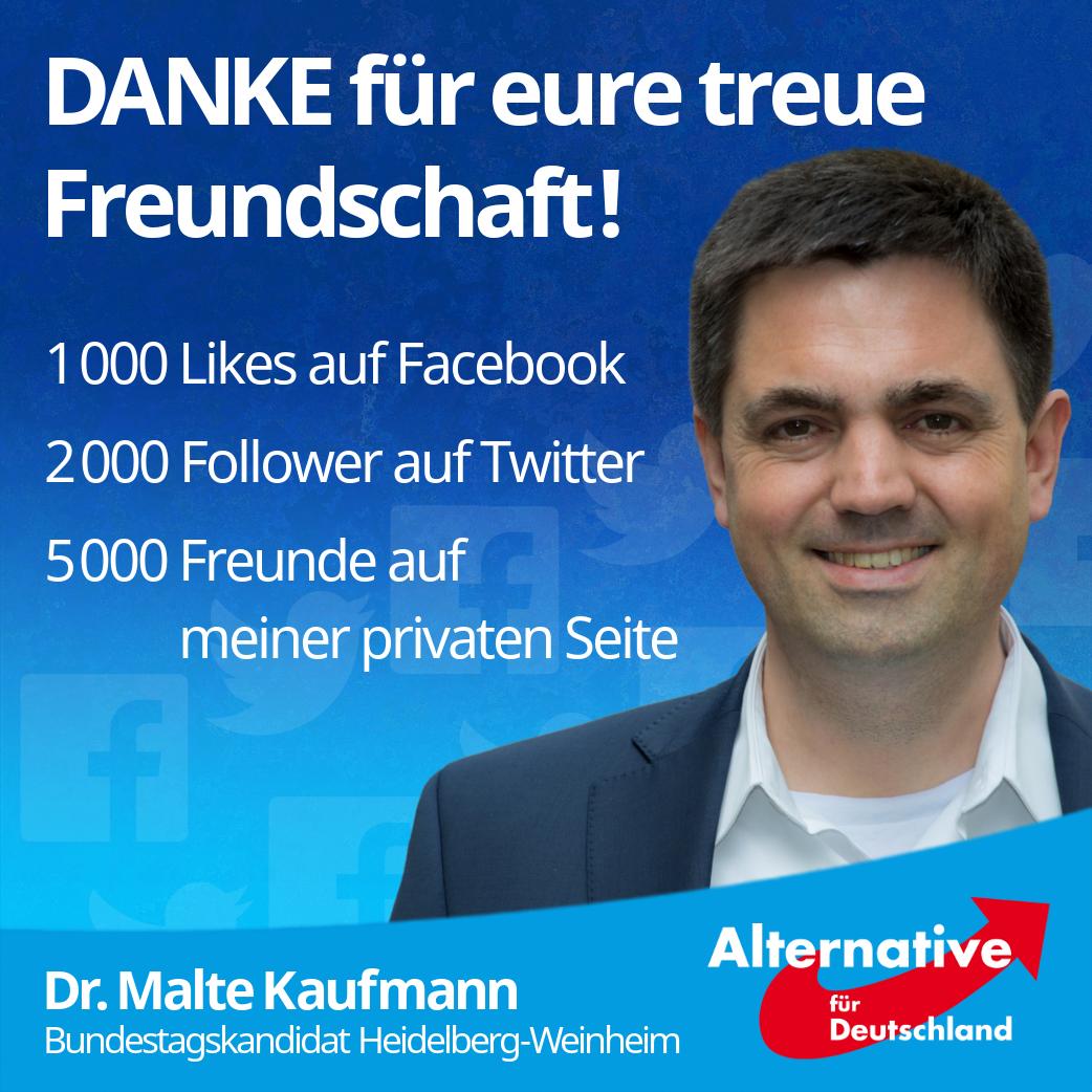 Direktkandidat Heidelberg-Weinheim, Dr. Malte Kaufmann