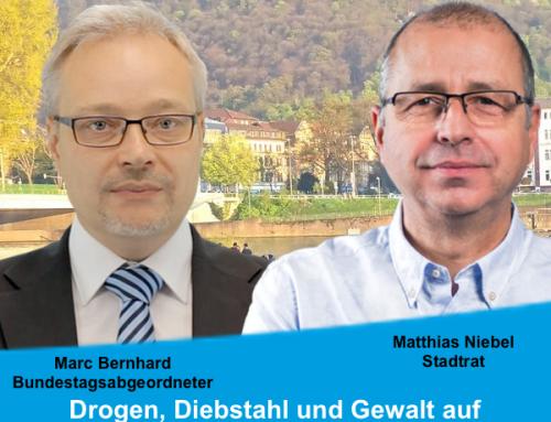 Pressemitteilung: AfD: Drogen, Diebstahl und Gewalt auf Neckarwiese beenden!