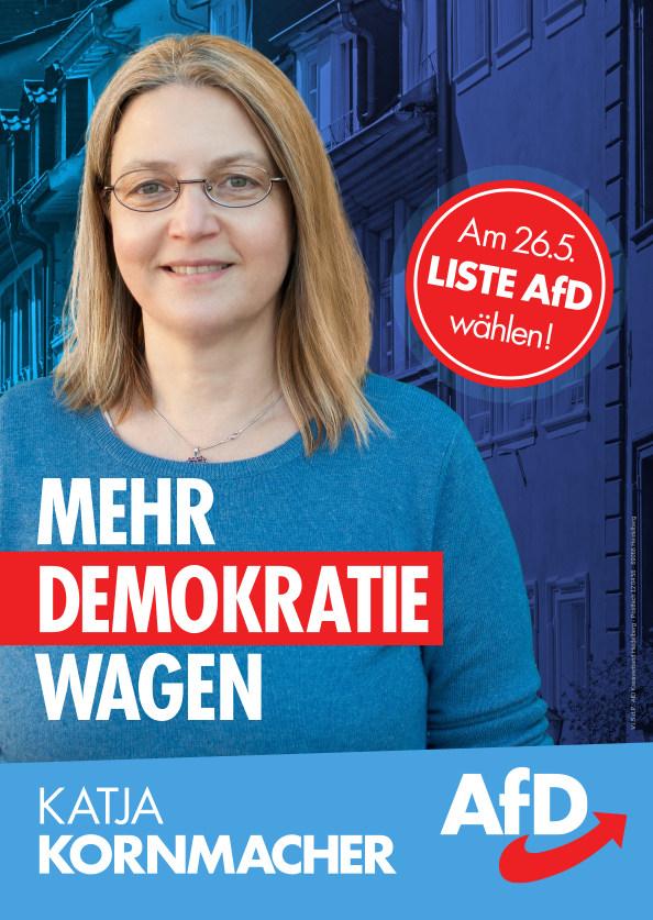 KatjaKornmacher_Demokratie