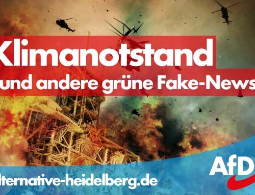 Pressemitteilung: Klimanotstand und der geplante Windindustrieausbau in Heidelberg