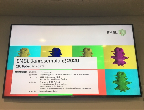 AfD vor Ort: Jahresempfang des EMBL